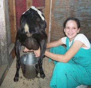 molly milking